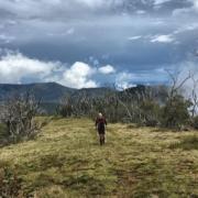 Coach Cronshaw on the Australian Alpine Trail during GSER 2018