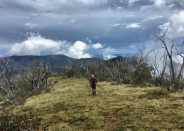 Coach Cronshaw on the Australian Alpine Trail during GSER 2018
